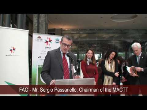 Mr.  Sergio Passariello Chairman of the MACTT