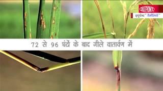 Video DuPont Galileo Hindi MP3, 3GP, MP4, WEBM, AVI, FLV Juni 2018