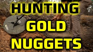 EP39 | GOLDEN Triangle GOLD NUGGETS | FOUND With METAL DETECTOR | SHOW N TELL