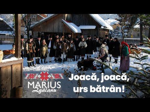 Marius Zgâianu - Joacă, joacă urs bătrân ! Contact: Tel: 0742 080 183 / www.mariuszgaianu.ro
