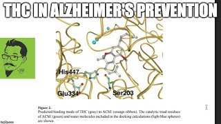 THCs and Alzheimer's Disease by The Pot Scientist Reports