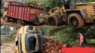 Video Jalan hancur dekat pabrik sawit | mobil terpuruk dan terbalik MP3, 3GP, MP4, WEBM, AVI, FLV Mei 2019