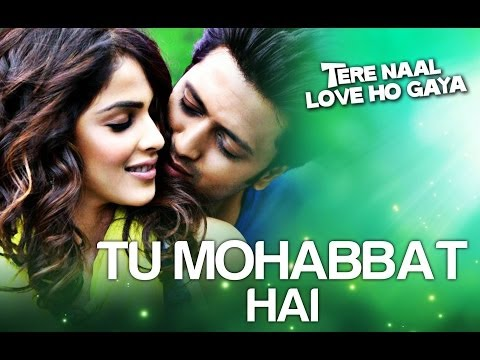 Tu Mohabbat Hai Hindi Song (2012)