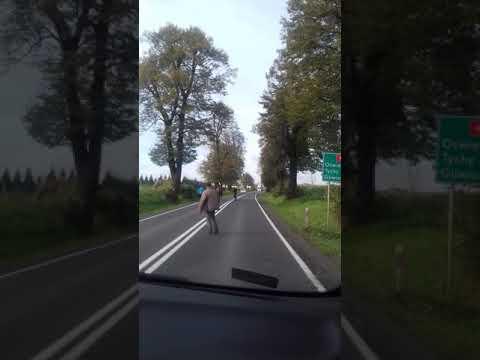 Yllättävä näky maantiellä Puolassa