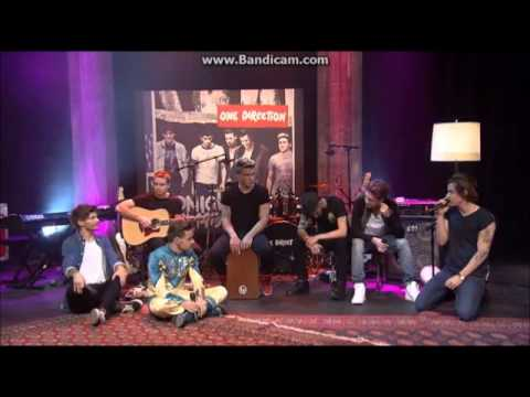 One Direction - Little Things - 1DDay November 23rd 2013 - Harry sings ''His Little Things'' (видео)