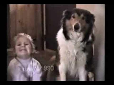 史上最會拍照的狗,露齒笑太可愛了!