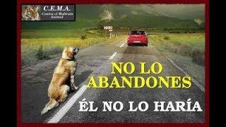 MYRIAM HERNANDEZ - He Vuelto Por Ti ( en vivo)