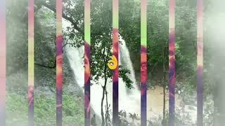 Funwithfriends#waterfall#Greenary#chilled#lovenature  #Filmoragoapp.