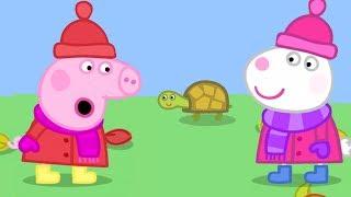 Video Season 5 - NO!!!  Peppa Pig Full Episodes   Naughty Tortoise   Cartoons for Children MP3, 3GP, MP4, WEBM, AVI, FLV Juli 2019