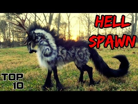 Top 10 Scary European Creatures That Might Be Real
