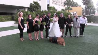 She Wanted Her Dog To Be Ring Bearer At Her Wedding, But She Never Expected THIS!