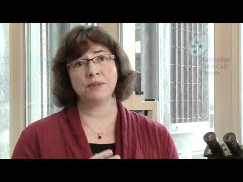 Cord blood: banking and uses