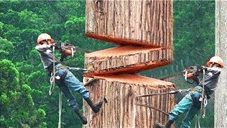 Video THE BRAVEST AND COOLEST WORKERS IN THE WORLD! MP3, 3GP, MP4, WEBM, AVI, FLV Desember 2018