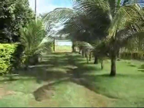 Vendo ou Alugo Rancho em Riolandia