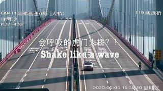 Falujący most na wietrze w Chinach – kto to budował?