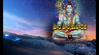 Lord Shiva Temples Decorated for Maha Shivaratri Celebrations in Warangal || NTV