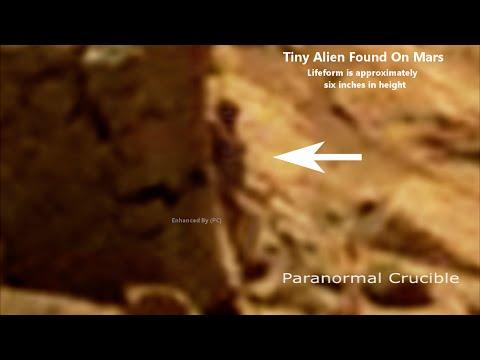 火星人現身??NASA火星照驚現奇異身影,到底真的假的?