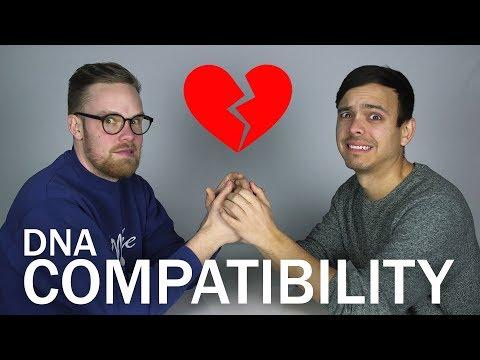 Should We Break Up? (DNA COMPATIBILITY TEST)