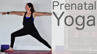 Prenatal Yoga with Lesley Fightmaster