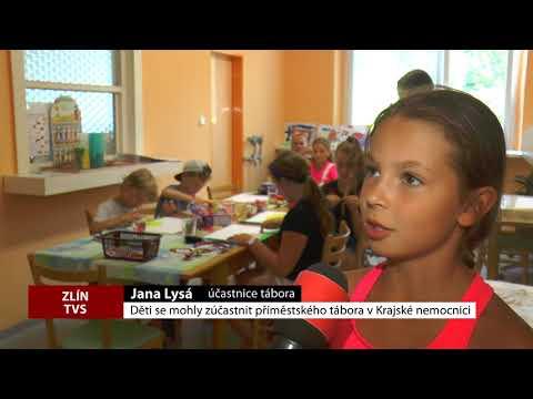 TVS: Deník TVS 26. 7. 2018