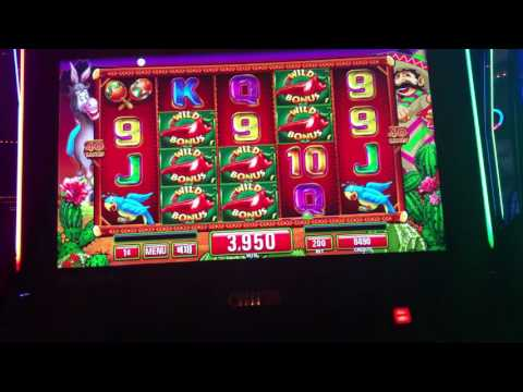 Chilli Gold Max Bet Slot Machine Wild Bonus Big Win