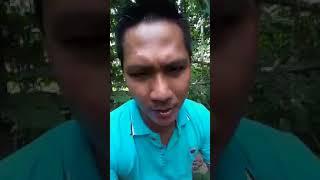 Khmer Politic - ហ៊ានធ្វើហ៊ាន..