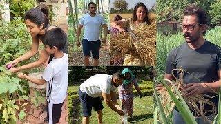 Aamir,Salman,Shilpa etc. Doing Farm Work during Relaxing at Farmhouse in Lockdown | Turns in Farmer