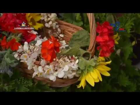 Flores frescas en el menú de Francisco