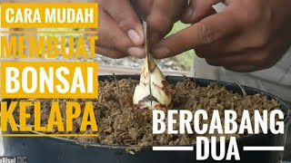 Video Cara Mudah Membuat Bonsai Kelapa Bercabang Dua || Easy Ways to Make Bonsai with Two Branches of Coco MP3, 3GP, MP4, WEBM, AVI, FLV Januari 2019