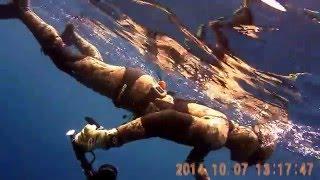 Download Lagu diving day :) Thassos island-2014 Mp3