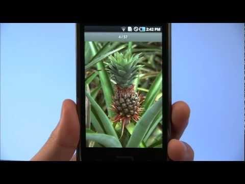 Video of WebAccess A