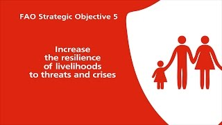 FAO Strategic Objective 5