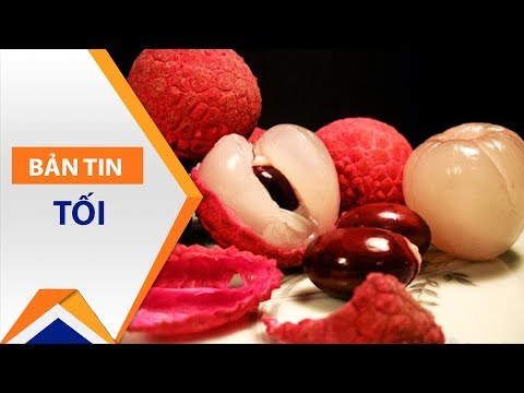 Ngộ độc, viêm não: Quả vải đang bị oan? | VTC1 - Thời lượng: 4 phút, 35 giây.