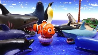 Video Sea Creatures Collection~! Dolphin Shark Whale Turtle Penguin Seal Octopus MP3, 3GP, MP4, WEBM, AVI, FLV Juli 2018
