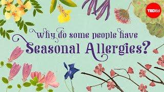 Why do people have seasonal allergies? – Eleanor Nelsen