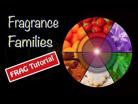 Fragrance families (видео)