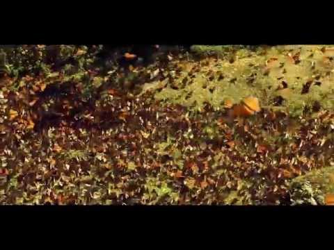 Best Of Me Un Official Movie Soundtrack Music VideoTrailer 2014