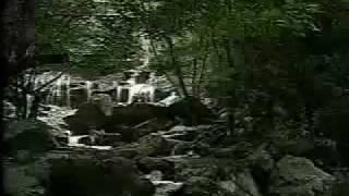 Turismo A Cachoeira do Roncador na Paraíba