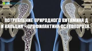 Остеопороз и его профилактика