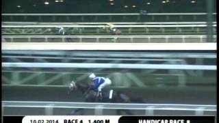 RACE 4 PANAMAO KING 10/02/2014