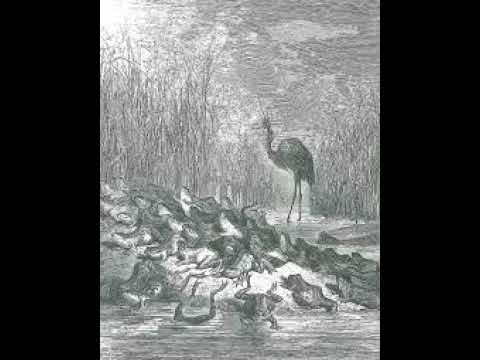 Les grenouilles qui demandent un roi Fable de La Fontaine lues par Christophe