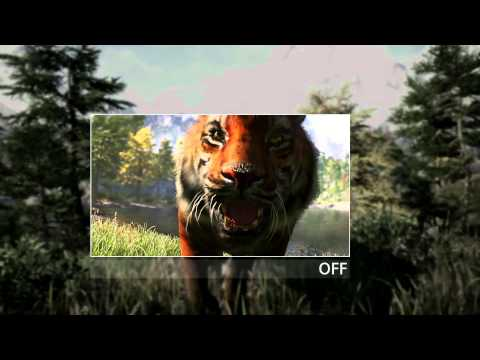 nvidia - Together with NVIDIA, we have been working to incorporate GAMEWORKS technologies to add visual enhancements for the PC version of the game. And for a limited...