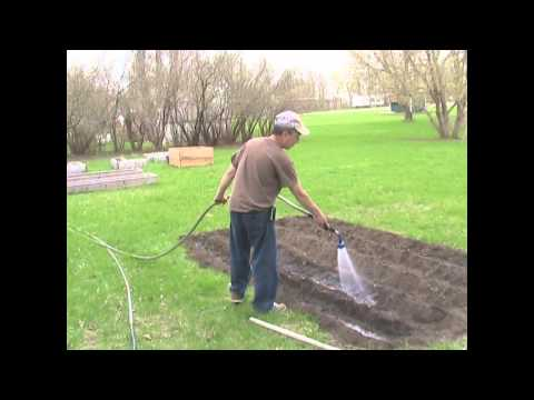 planting - In today's episode you and I will plant Ambrosia Sweet Corn. Join me in the garden for a slightly different method of planting corn for a stronger healthier ...
