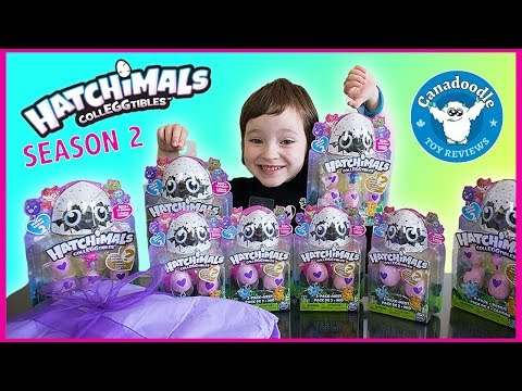 OPENING 60 HATCHIMALS COLLEGGTIBLES EGGS! Rare & Ultra Rare Finds with Canadoodle Toy Reviews