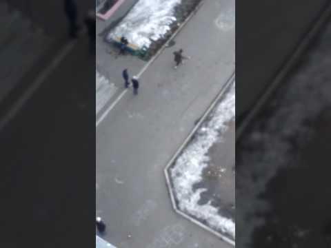 Школьники мерятся боевыми навыками - DomaVideo.Ru