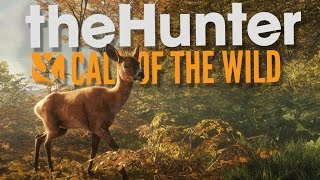 The Hunter Call of the Wild Beta Gameplay - Hunting is Hard! - theHunter Call of the Wild