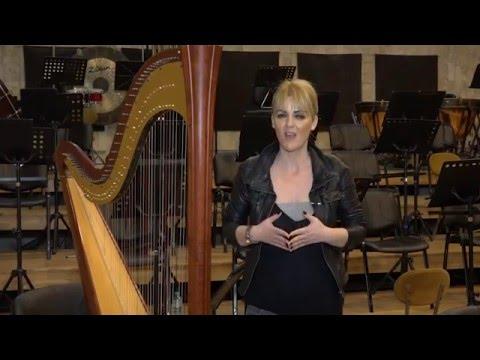 Emisiunea Profesia ca un destin – 27 martie 2016 – Corneliu Irimia