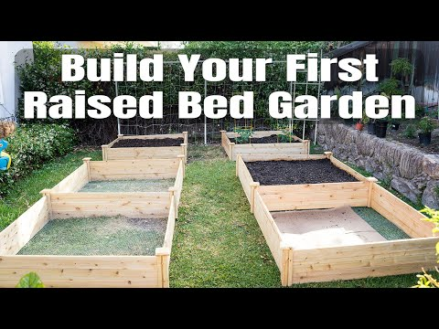 Raised Bed Gardening – How To Start A Raised Bed Vegetable Garden