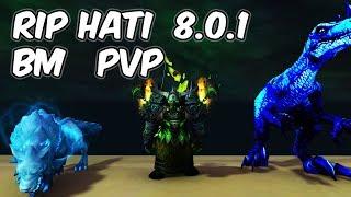 Rip Hati - 8.0.1 Beast Mastery Hunter PvP - WoW BFA
