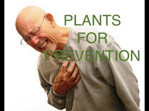 Heart Disease Prevention with Plants